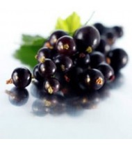 Black currant dry 100 gm